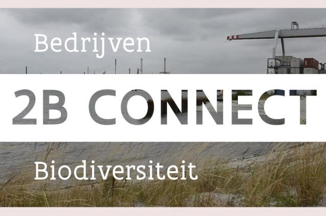 2B Connect uitgelegd in 5 minuten